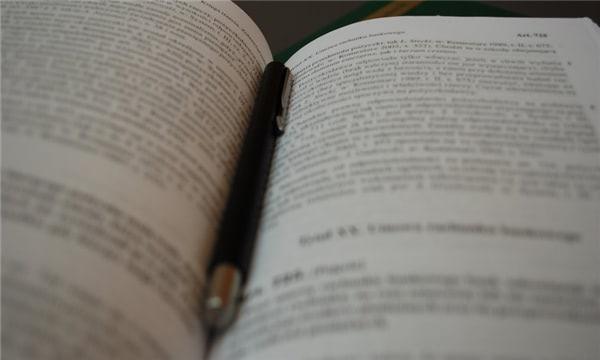 延期審理申請書怎么寫