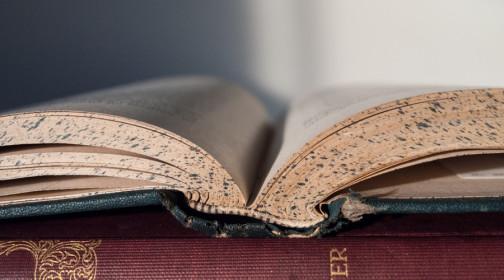抵押借款合同怎么写