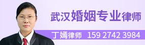 武汉丁嫣律师