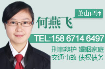 杭州何燕飞律师