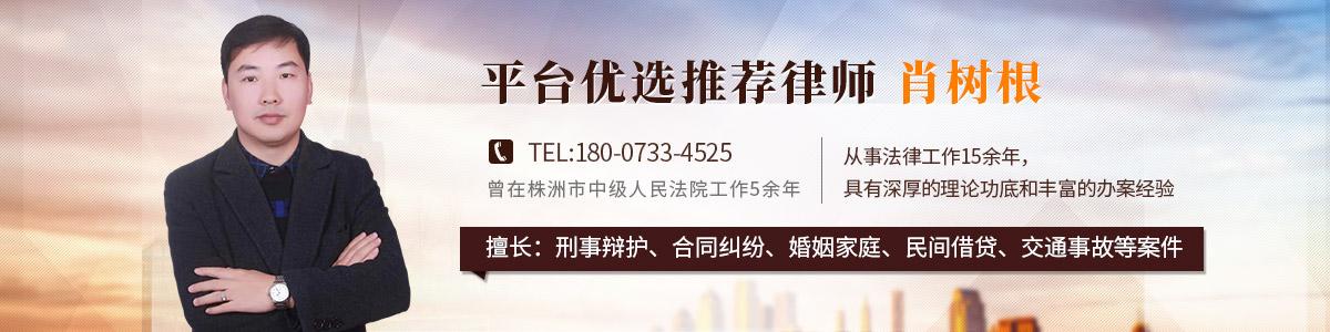 攸县律师-肖树根律师